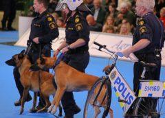 Polisens uppvisning, My Dog i Göteborg