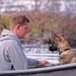 Åkt båt säkert med din hund!